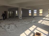 昆山城北厂房 房东诚心出售 独栋1600平米