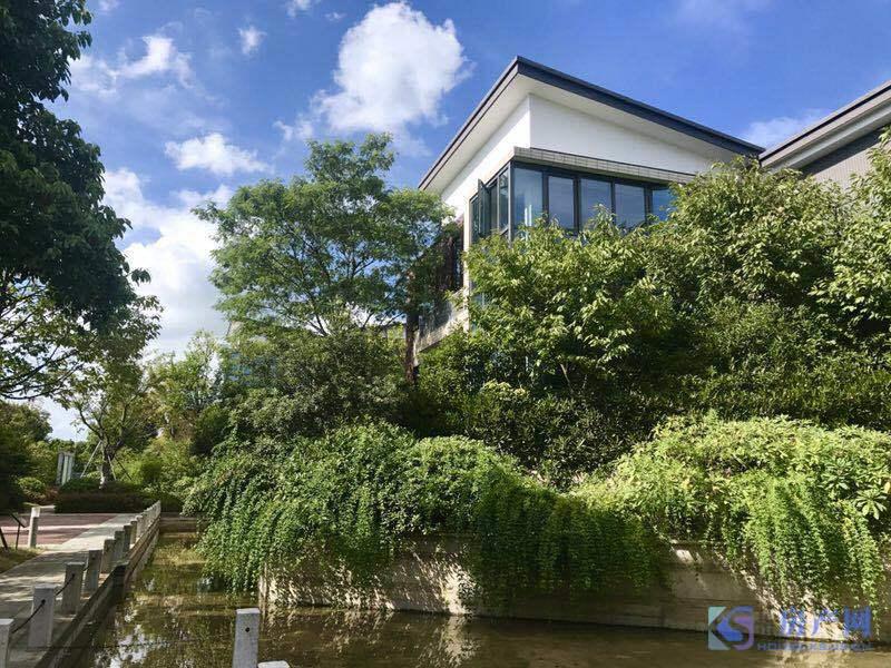 厦门边别墅湿地双景区纯公园所有的美好,从遇见你开始最新别墅太湖图片