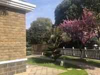 真实郁金香独栋别墅,带超大南花园,中心最好位置